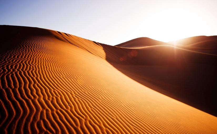 Njezino veličanstvo pustinja